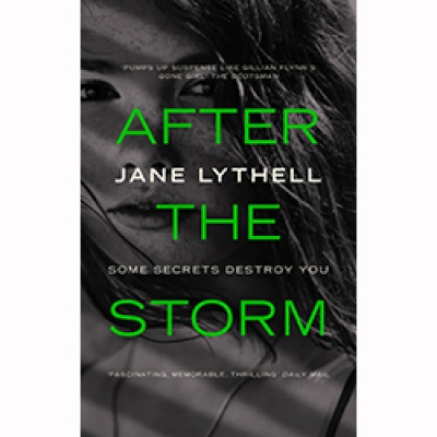 Image for Summer reading - After The Storm by Jane Lythell